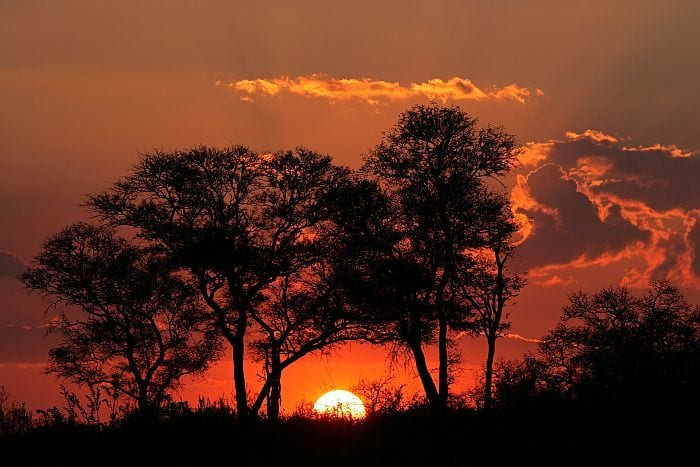 Botswana-Sunset-with-silhouetted-Africa-BS53270206
