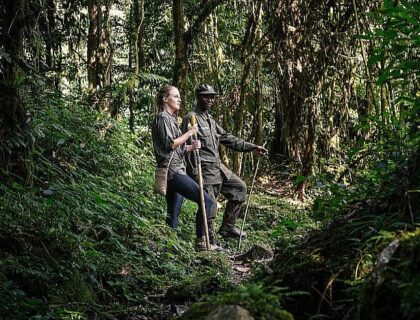 Bwindi impenetrable forest trekking with guide, gorilla tracking uganda