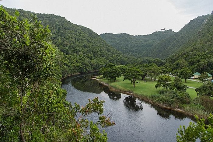 Garden route attractions -Kingfisher walking trail