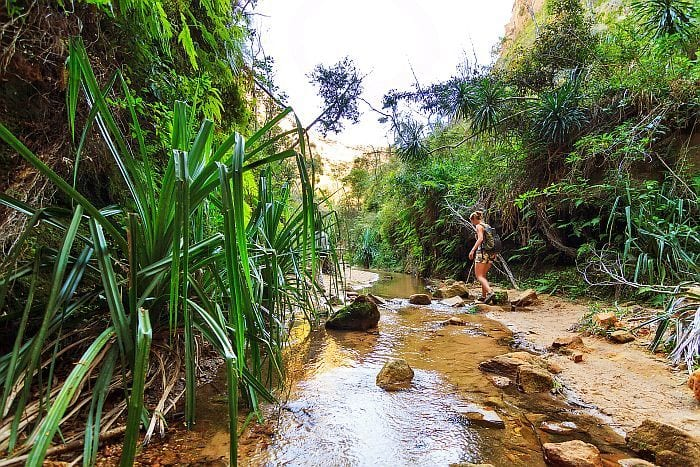 Walking in isalo National park on Rainforests, Mountains & Beaches of Southern Madagascar