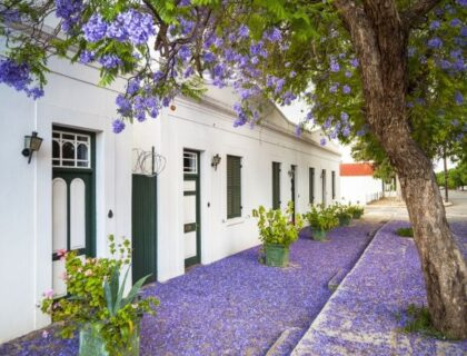 The Road Less Travelled in South Africa Karoo-Graaff-Reinet