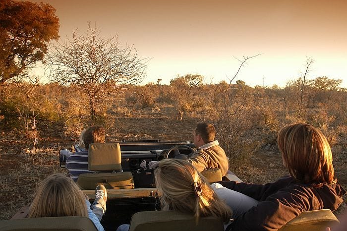 kids on safari, Cape & Kruger family explorer safari