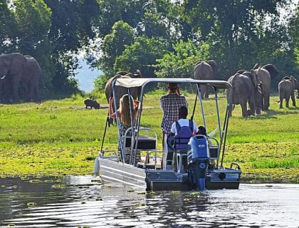 Murchison Falls game viewing by boat, Uganda safaris