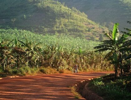 Rural road on Rwanda Mountain Snapshot safari