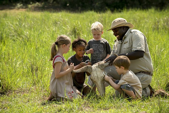 Family safari holidays for younger kids