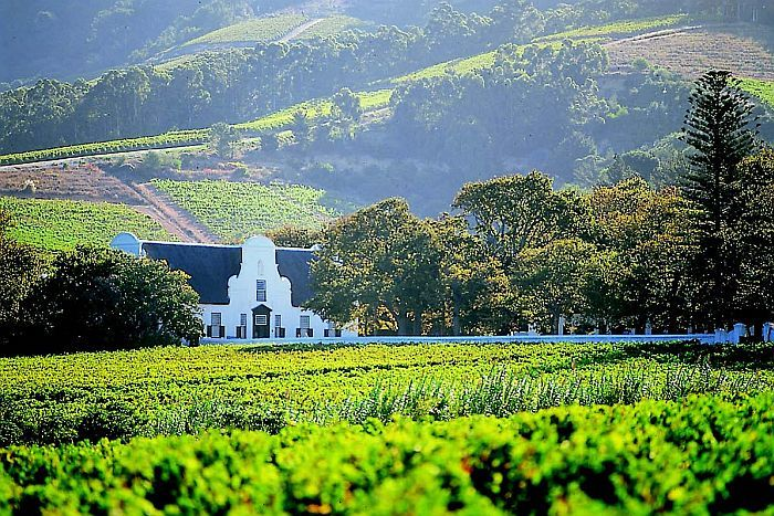 South Africa self-drive -Winelands