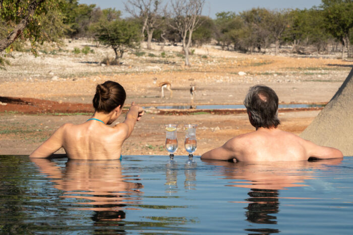 Cedarberg Travel   Andersson's at Ongava